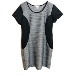 NWT. (14/16) Avenue Textured Black & Gray Dress